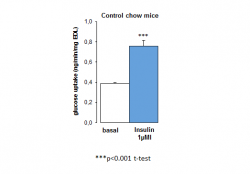 Glucose uptake in isolated mouse adipocytes after 12 weeks of diet