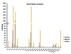 Fecal lipids analysis